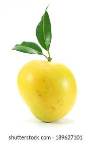 apple mango on white background