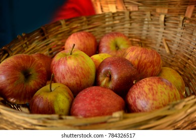 Apple Market at Manali