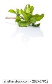 Apple mint leaves herbs over white background