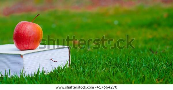 Apple on book, green grass