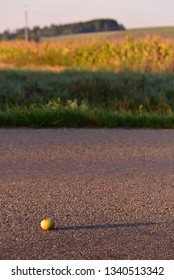 An apple on the road with long shadow.