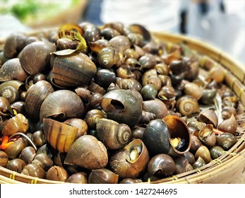 the apple snails were cooked as Thai local food. Pila ampullaceal is a species of freshwater snail with an operculum, an aquatic gastropod mollusk in the family Ampullariidae.