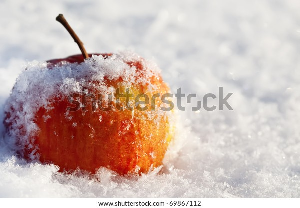 apple in to snow