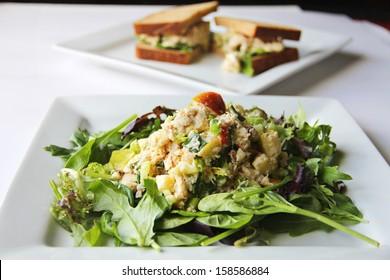 apple tuna salad