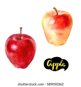 Apple watercolor illustration. Apple isolated on white background.