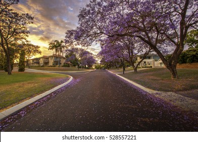 Applecross is a riverside suburb of Perth, Western Australia, bounded by Canning Highway and the Swan River. It is located within the City of Melville.