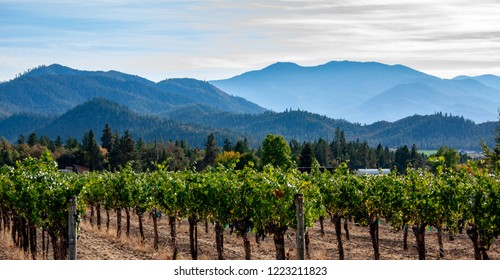 Applegate Valley winery near Ashland, Oregon