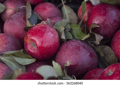 Apples from a Farmer's Market Stand