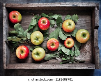 Apples with leaves in wooden box. Overhead shot.
