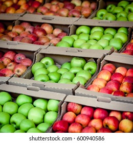 apples on market. Fresh Apple. apples background