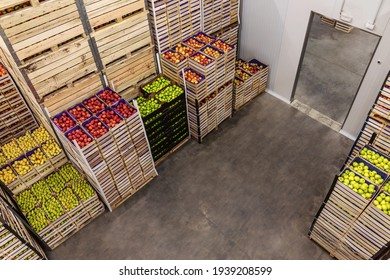 Apples and pears in crates ready for shipping. Cold storage interior.