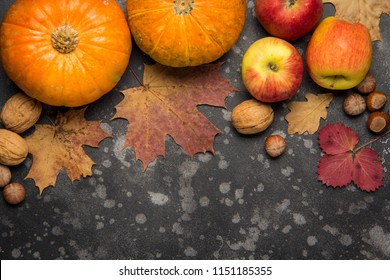 Apples, pumpkins,hazelnut, walnut and fallen leaves on dark background. Copy space for text, top view. Thanksgiving background