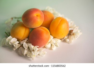 Apricot and acacia flowers. Shallow depth of field. Apricots contain powerful antioxidants in the category of carotenoids, which give color and the antioxidants lutein, zeaxanthin and lycopene.