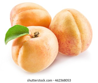 Apricot fruit with leaves on the white background.