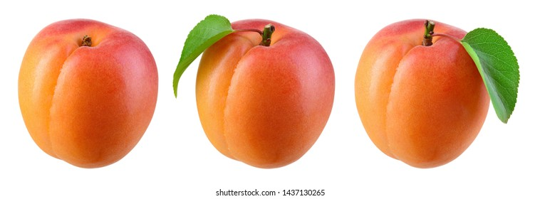 Apricot isolate. Apricots on white. Fresh apricot fruit. Set with clipping path.