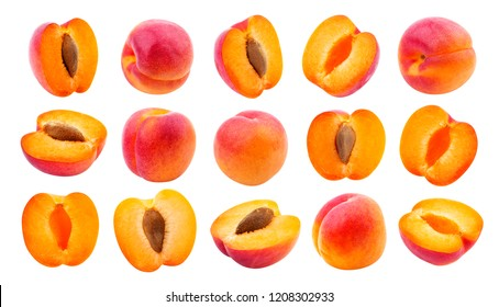 Apricot isolated. Collection of apricots isolated on white background with clipping path