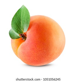 Apricot isolated. Apricot with leaves on white. With clipping path.