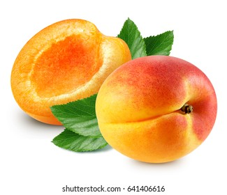 Apricot with leaf isolated on white background