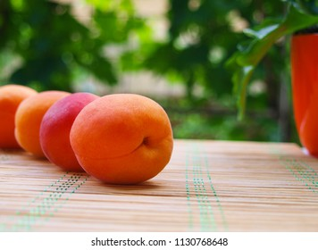 Apricots arranged in a series on a bamboo placemat, with blurred garden and potted plant background.