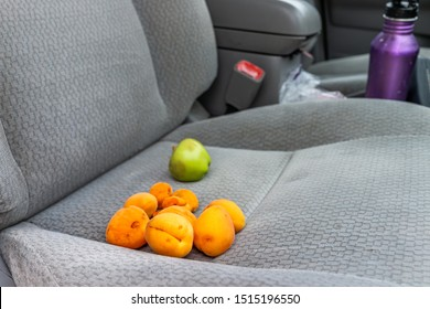 Apricots harvest of many ripe orange yellow fruit and green apple on passenger seat of car as snack on road trip with nobody