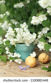 Apricots and Jasmine flowers in blue Cup