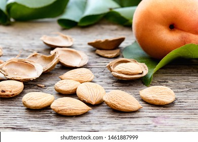 Apricots near pits and apricot pits on the background of old boards. Apricot pits for the manufacture of tablets and drugs. Close-up.
