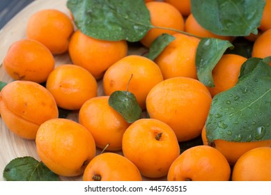 apricots on a dark wooden background, selective focus, rustic style
