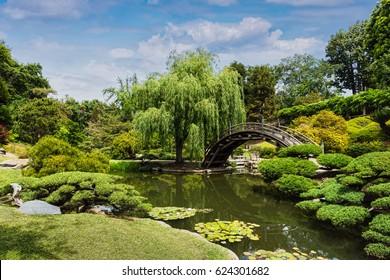 APRIL 17, 2017 - SAN MARINO, CA. USA - Huntington Botanical Japanese garden. taken April 17, 2017 in San Marino, CA.