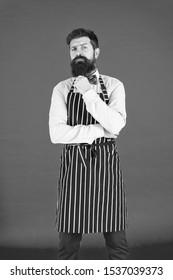 The apron is just part of my kit. Stylish waiter in elegant bow tie and bib apron. Bearded man wearing cooking apron. Cook with long beard in striped kitchen apron.