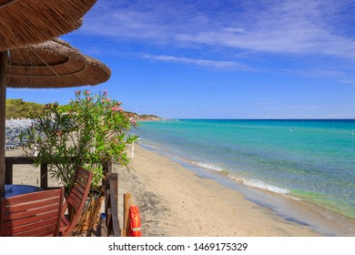 Apulia relax. The most beautiful sand beaches of Salento: Alimini bay, Italy (Lecce). It is a vast sandy coast protected by pine forests that grow from dunes.