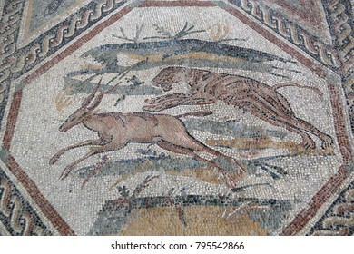 AQUILEIA, ITALY - OCTOBER 13, 2016: Ancient mosaic of Roman ruins on October 13, 2016 in Aquileia, Italy. It is a unesco world heritage.