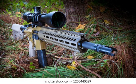 AR-15 in a forest with a high powered rifle scope