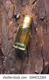 Arabian oud attar perfume or agarwood oil fragrances in mini bottle. Bottle of oil agarwood tree against the bark. Oil Oudh.