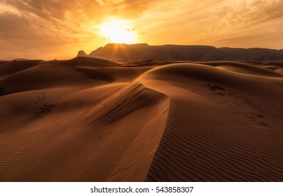 The Arabian Sunset