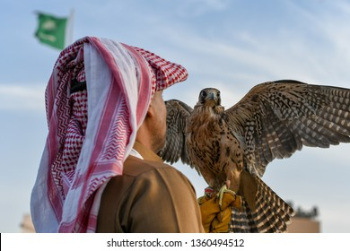 Arabic man from Saudi Arabia wears traditional clothes and holding trained falcon