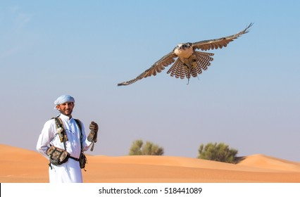 Arabic man in traditional clothing with a falcon during a falconry training in the desert. Dubai, United Arab Emirates - 19/NOV/2016