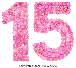 Arabic numeral 15, fifteen, from pink forget-me-not flowers, isolated on white background