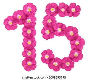 Arabic numeral 15, fifteen, from pink flowers of flax, isolated on white background