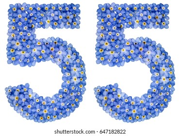 Arabic numeral 55, fifty five, from blue forget-me-not flowers, isolated on white background