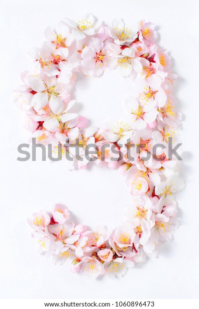 Arabic numerals laid out from spring pink flowers on a white background