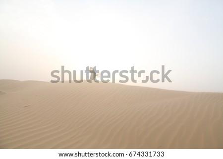 Photoedit Now674331733 Women Desert Balloon Arabic Dune Stock thsrdCQxB
