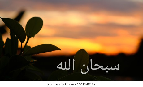 Arabic word of Subhanallah describing God is perfect with background of beautiful sunrise and silhouette of leaves.
