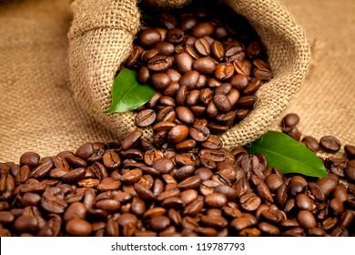 arabica coffee beans in a burlap bag