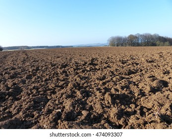 Arable field in the background forest