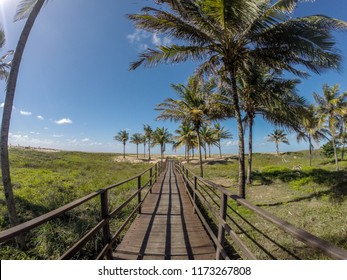 Aracaju, Sergipe, Brazil. June 2017. Landscape on the beach of Atalaia in northeastern Brazil.