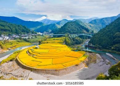 Aragijima or aragi island, Terrace paddy field, aridagawa, wakayama prefecture, japan
