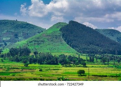 araku valley indian valley Andhra Pradesh Visakhapatnam tourism vizag city