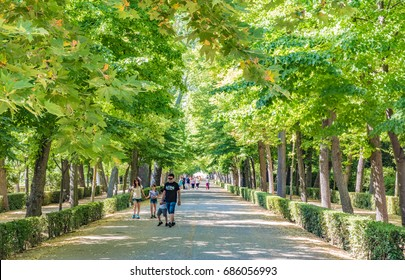 ARANJUEZ, SPAIN - JUNE 25, 2016: Alley in the Príncipe Garden in Aranjuez, Spain. The Cultural Landscape of Aranjuez has been declared as a World Heritage Site by UNESCO in 2001.