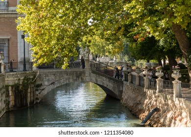 ARANJUEZ, SPAIN -  OCTOBER 13, 2018: Garden of the island Aranjuez in the vicinity of the royal palace, OCT 13, 2018 in Aranjuez, Spain