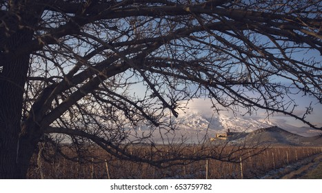 Ararat mountain and Khor Virap christian apostolic monastery seen through the trees in Armenia. Toned with soft old fashioned sepia colors. Concept of travel, freedom and religeon.